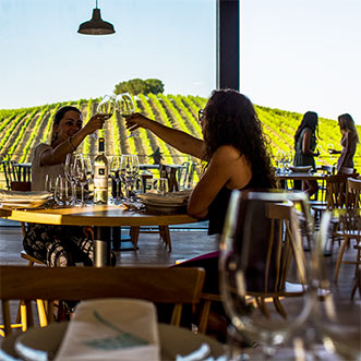 Cooking and wine tasting in Alentejo
